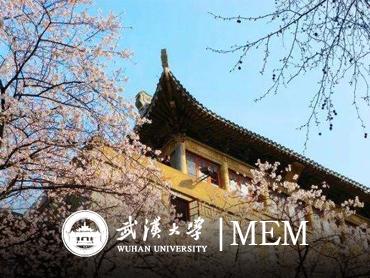 武汉大学MEM(深圳)